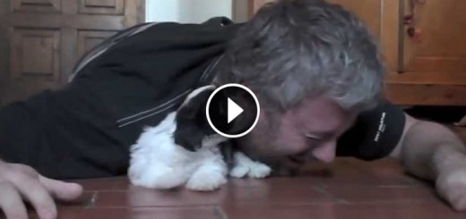 man playing with his puppy