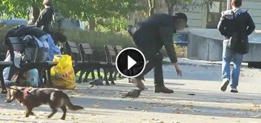 A Guy Purposely Drops his Wallet in Front of the Homeless