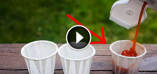You've been Using Ketchup Cups Wrong