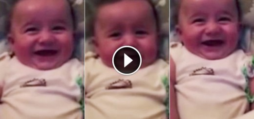 We Dare You Not To Laugh When You Watch This Video!
