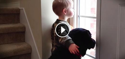 boy pup babisitter