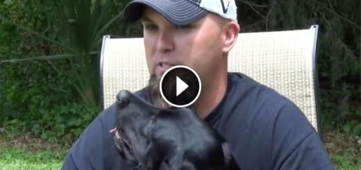 service dog react veteran panic attack