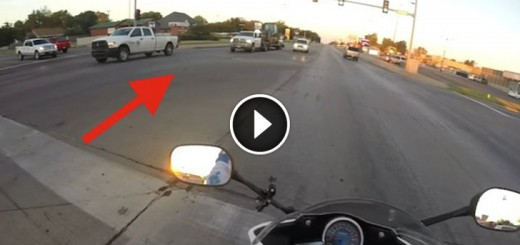 motorcycle saves kitten