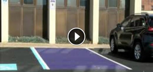 purple parking spot