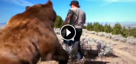 man grizzly bear friend