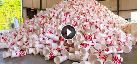chick-fil-a cups