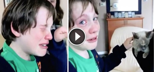 boy cries losted cat